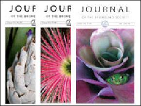 journalblock